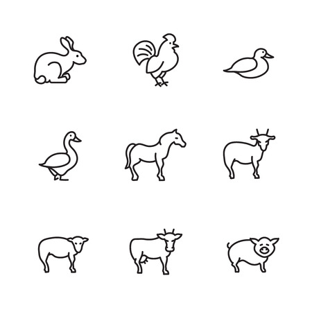 Farm animals line vector icons set. Chicken and pig, swine and livestock, cock and cattle, cow and rabbit, horse duck sheep illustration