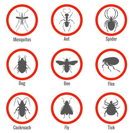garrapata: Control de plagas y los insectos, iconos conjunto. La se�al y de las abejas, insectos y ara�as, moscas y cucarachas, pulgas y mosquitos, ilustraci�n vectorial Vectores