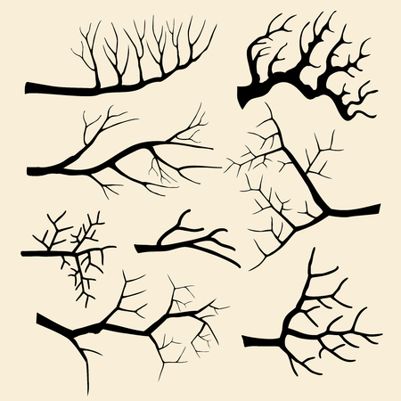 a twig: Tree branches set in hand drawn style. Silhouette plant, wood outline, twig decoration. Vector illustration Illustration