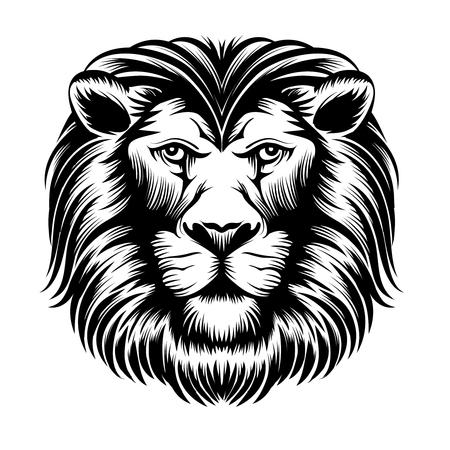 cabeza: Cabeza de león. Mamífero animal, leo el poder salvaje, fuerza felina, ilustración vectorial Foto de archivo