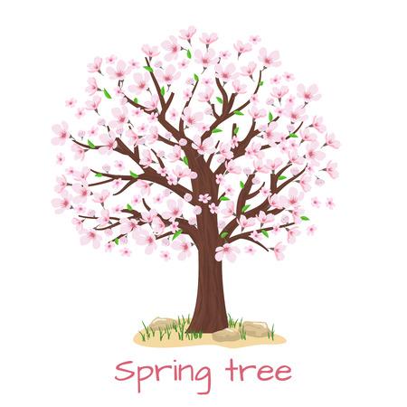 Primavera árbol de la flor de cerezo. Pétalo y naturaleza, planta rama, ilustración vectorial