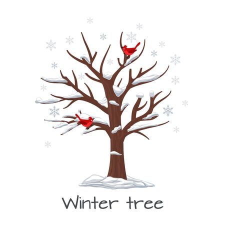 Winter tree with birds. Season nature, snow on wood, snowflake and plant, vector illustration