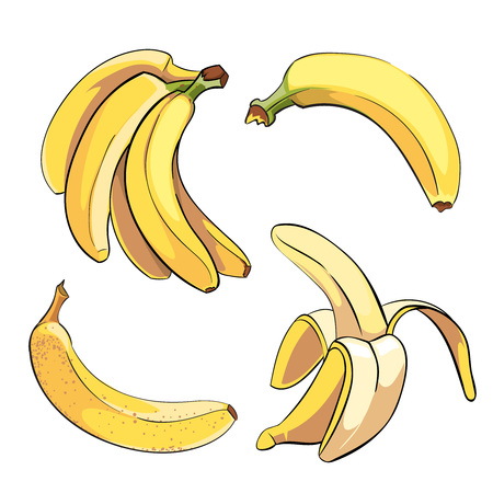 banane: Les bananes fixées dans le style de bande dessinée. Fruit d'aliments sucrés mûrs, illustration vectorielle