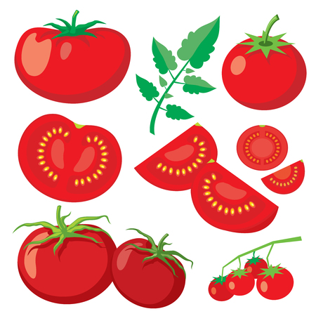 tomatoes: Vector fresh tomatoes in flat style. Healthy vegetable food, organic ripe fresh natural illustration Illustration