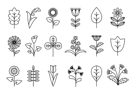 organic: Stylized line flowers and leaves. Floral nature, plant decorative, petal vector illustration Illustration