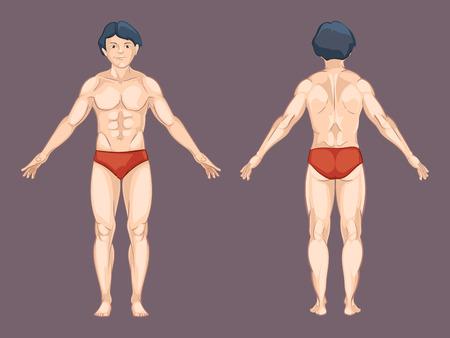 Männliche Körperteile Im Cartoon-Stil. Menschliche Brust, Knie Und ...