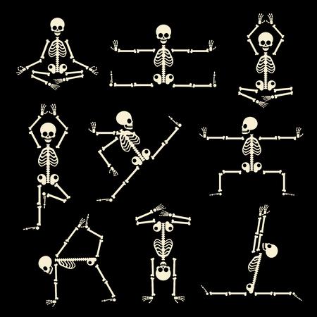 calavera caricatura: Kung Fu y yoga esqueletos conjunto. La anatomía humana pose, cómico cuerpo, de buena condición física, ilustración vectorial