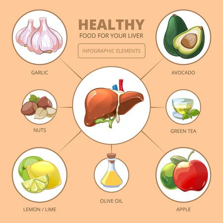 간 건강 식품. 애플과 올리브, 라임 또는 레몬, 녹차, 견과류, 마늘 디자인, 벡터 일러스트 레이 션. 의료 건강 인포 그래픽 일러스트