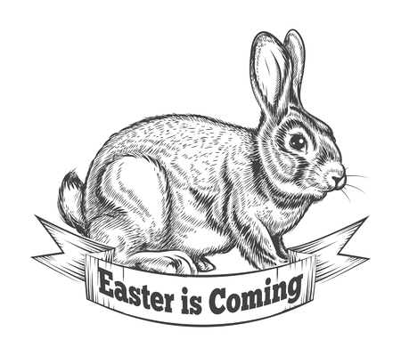 vintage drawing: Hand Drawn Easter Bunny in Retro Style. Vector Easter Bunny Illustration