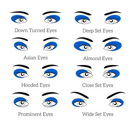 Easy makeup tips for the eyes. Beauty eyelash, eyebrow and mascara, fashion eyeshadow. Easy makeup vector illustration or easy makeup tips