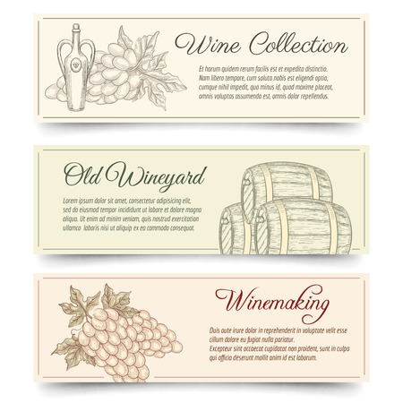 wine and food: Wine and wine making banners set. Drink and food, product alcohol, grape tasting. Hand drawn wine making vector banners