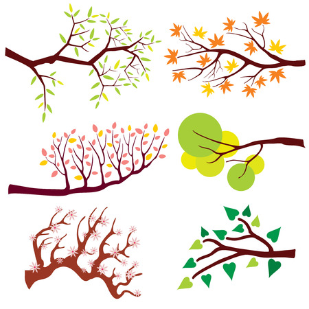 Tree branch with leaves and flowers. Nature flower floral, summer or spring green plant, blossom season. Vector illustration set
