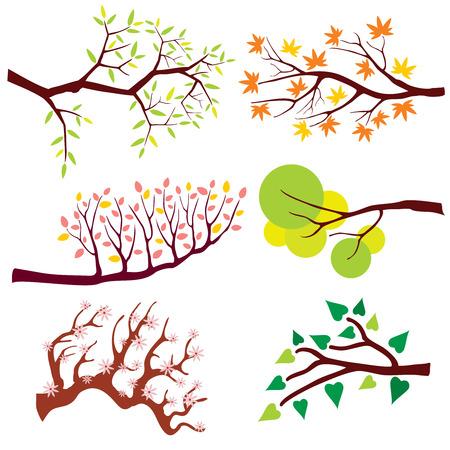 Rama de árbol con hojas y flores. Naturaleza floral flor, verano o una planta verde de la primavera, estación de la flor. Conjunto de la ilustración