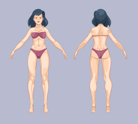 Woman or female body in cartoon style. Front and back standing pose. Beauty lady, person adult model, fashion bikini underwear. Vector illustration Illustration