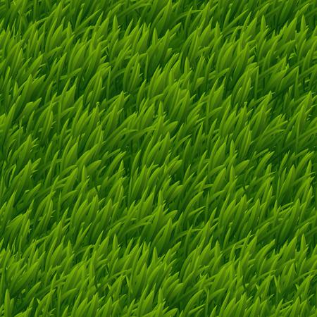 Groen gras vector naadloze textuur. Gazon natuur, weide plant, veld natuurlijke outdoor illustratie