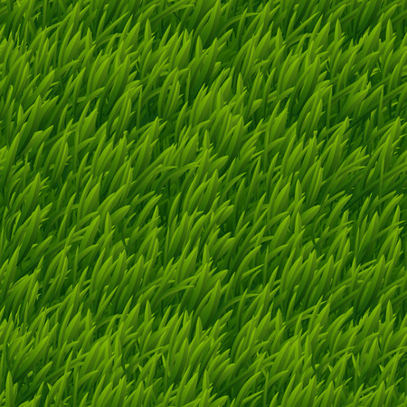 Green grass vector seamless texture. Lawn nature, meadow plant, field natural outdoor illustration