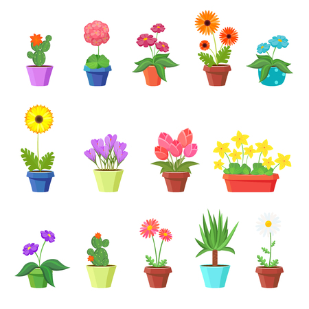 Cute spring flowers in pots vector. Flower spring, flower pot, floral plant, nature flower blossom, chamomile tulip sunflower illustration Çizim