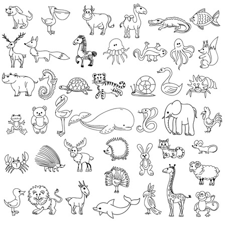 Doodle animals childrens drawing. Animal doodle drawing,  character animal wildlife, animal pelican cow camel and crocodile, fish and elk, fox and zebra, jellyfish and lizard, vector illustration