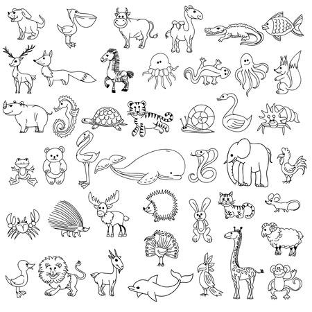 Doodle dieren childrens tekenen. Animal doodle tekening, karakter dier wild, dier pelikaan koe kameel en krokodillen, vissen en elanden, vossen en zebra, kwallen en hagedis, vector illustratie