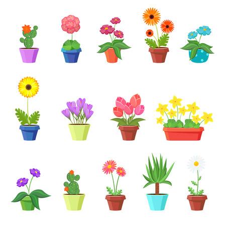 Cute spring flowers in pots vector. Flower spring, flower pot, floral plant, nature flower blossom, chamomile tulip sunflower illustration Illustration