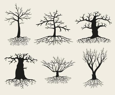Vector kahlen Baum Silhouetten mit Wurzeln. Ast Baum, Wurzel Baum gesetzt, Pflanze Baum kahl Illustration