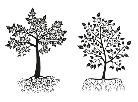 roots: Black trees and roots silhouettes with leaves. Tree root, flora tree foliate, plant tree. illustration set