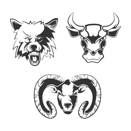 animal head: elements for sport team labels with wolf, bulls and ram. Animal wild, head wolf, animal bull, animal ram, icon tattoo animal illustration