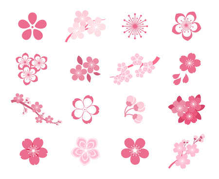 cherry blossom: Cherry blossom japanese sakura vector icon set. Nature japanese cherry, spring floral sakura, blossom flower sakura, icon sakura illustration