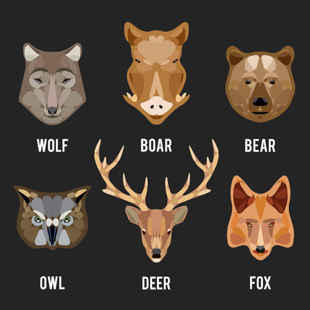 wolf eyes: Animals heads flat icons. Animals circle design icons set. Head animal, face animal, character animal wild, vector illustration