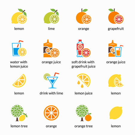 orange juice: Orange, lemon, lime and grapefruit vector icons. Drink with citrus, alcohol with lemon and lemonade. Grapefruit juice, healthy juice, tropical juice beverage, sweet juice illustration