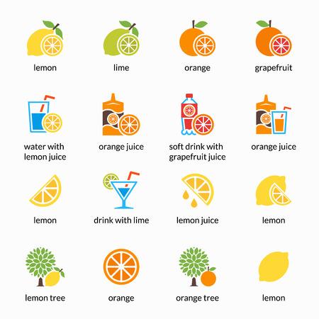 grapefruit juice: Orange, lemon, lime and grapefruit vector icons. Drink with citrus, alcohol with lemon and lemonade. Grapefruit juice, healthy juice, tropical juice beverage, sweet juice illustration
