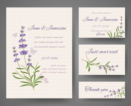 calendula flower: Vector templates for celebration and wedding with lavender bunches