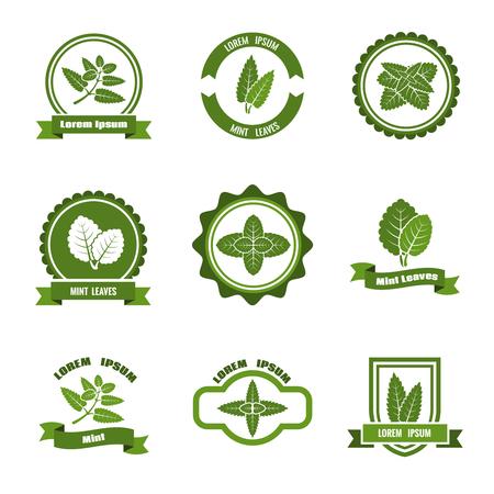 menta: Hojas de menta vector, etiqueta, emblemas establecidos. Menta, etiqueta verde menta, hojas de menta ilustración emblema