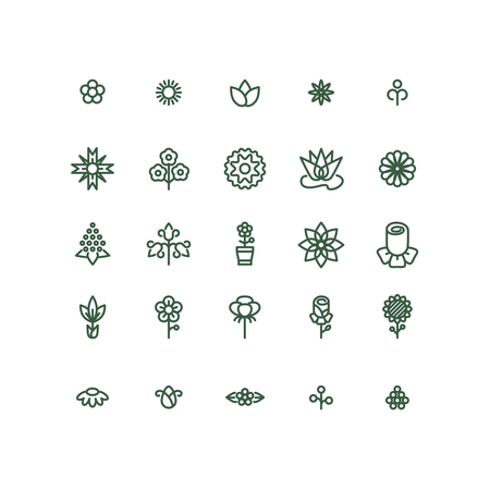 flower icon: Flowers line vector icons. Flower plant, natural flower linear, flower icon illustration