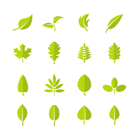 Green leaves vector icons. Leaf for nature eco organic