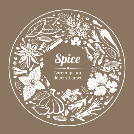 Vector background with herbs and spices. Spice plant natural organic ingredient label illustration Illustration