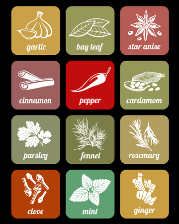 aromatic: Herbs and spices, cook culinary ingredients vector icons. Fresh organic natural spice signs illustration