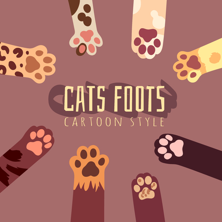 feline: Vector background with cats foots in cartoon style. T-shirt design with animal print