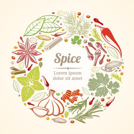 Icone di erbe e spezie nella composizione del cerchio. Concetto di stile di vita sano. Illustrazione vettoriale