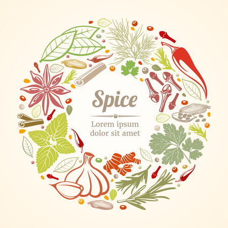 aromatic: Spices and herbs icons in circle composition. Healthy lifestyle concept. Vector illustration Illustration