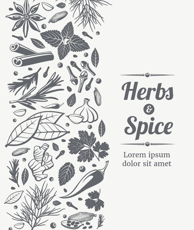 Herbs and spices sketch decorative vector background for card design