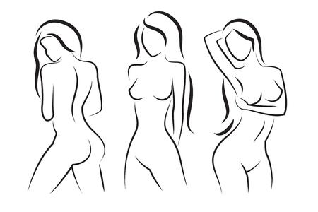 女性の体のベクトル シルエット。美しいセクシーな女性の体図図面