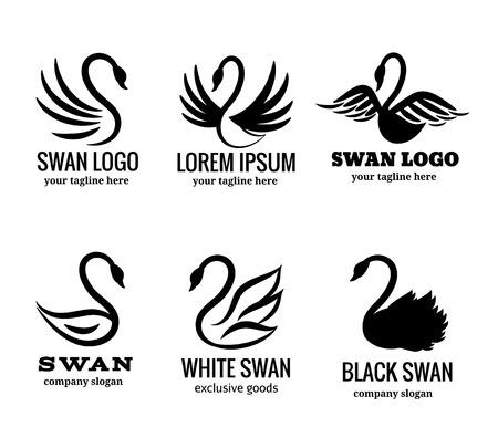 白または黒の白鳥のベクトル図の白鳥セット  イラスト・ベクター素材