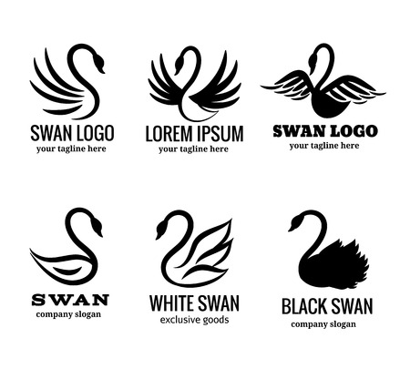 Swan  set of white or black swan vector illustration