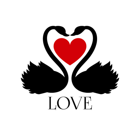 love life: Two loving swans with heart on white background. Vector concept banner love with swans bird, illustration red heart with couple swans Illustration