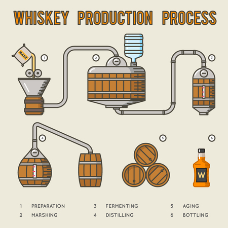 distillation: Whiskey production process. Distillation and aging whisky infographics. Structure manufacture whiskey and illustration production whiskey