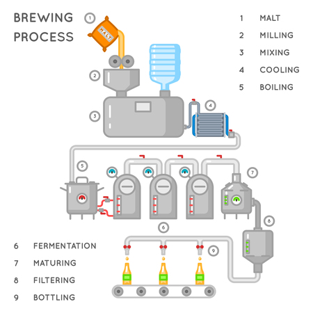 brewing: Beer process. Brewing infographic or brewery process. Alcohol brewery production, conveyor produce beer. Vector illustration