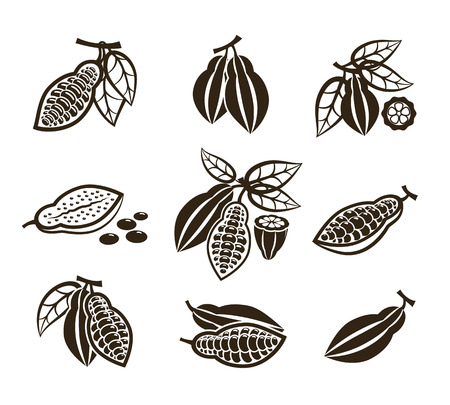 Cacao beans vector icons or cocoa pod signs in monochrome style illustration