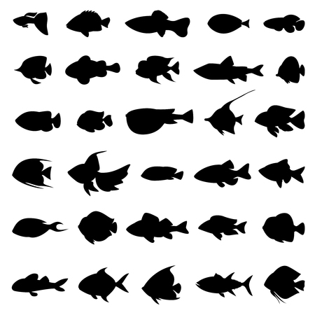 a freshwater fish: Fish vector silhouettes black on white. Set of marine animals in monochrome style illustration