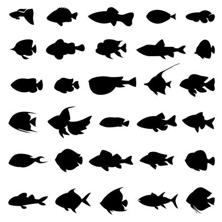 peces siluetas vector negro sobre blanco. Conjunto de animales marinos en blanco y negro estilo de ilustración